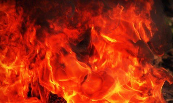 los signos de fuego